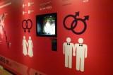 Suprema Corte avala segundo matrimonio gay en Oaxaca
