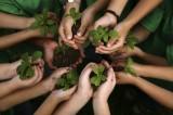 Mercados globales en miras hacia la sostenibilidad: 2degrees
