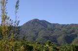 Carta: Exigen detener la destrucción de la Sierra de San Felipe en Oaxaca