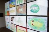 """Inauguran exposición """"Anfibios, centinelas ambientales: salamandras"""""""