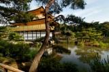 Estudia tu licenciatura completa en Japón, consulta aquí convocatoria