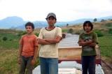 """Se estrena hoy en las salas de cine mexicanas """"La jaula de oro"""" #JuevesdeCineySeries"""