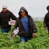 MIGRACIÓN: 1,203,680 paisanos de Oaxaca viven en Estados Unidos
