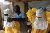 Emergencia Sanitaria Internacional por ébola declara la OMS