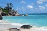 Las nueve mejores playas