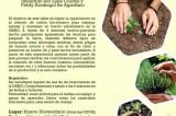Permacultura Universitaria: Curso de Huertos Urbanos