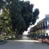 Oaxaca, un continente: Centro de Convenciones, ¿Negocio para quién?