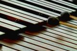 La Música Neotípica de Concierto, un artículo de Carlos Salomón