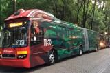 Conoce más sobre el Metrobús y sus 10 años de vida