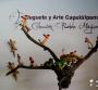 Oaxaca, un continente: Turismo y PYMES II, por Ángel Osorio