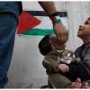 TU AULA: Videos que te ayudarán a entender los conflictos en medio oriente