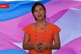 VIDEOCOLUMNA: Democracia, feminismo y diversidad sexual. Por Rebeca Garza