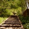OAXACA: 5 Pasos para llegar a el Boquerón de Tonalá