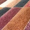 La Secretaría de Economía libera la importación de frijol bajo ARANCEL – CUPO para 2017