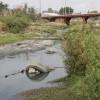 #UnOrienteVerde  Contaminación en ríos de Oaxaca