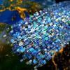 UNESCO: Se abre nueva brecha mundial de los conocimientos