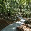 Tres lugares para cambiar de aires (y prácticamente seguir en la ciudad de Oaxaca)