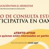 Avances de la consulta en educación de AMLO