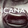 Mexicana, el acervo cultural de México en un click