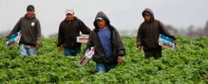 Migrantes-Por pormipatria