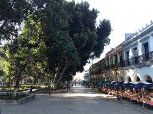 Zócalo Oaxaca - Ron Mader