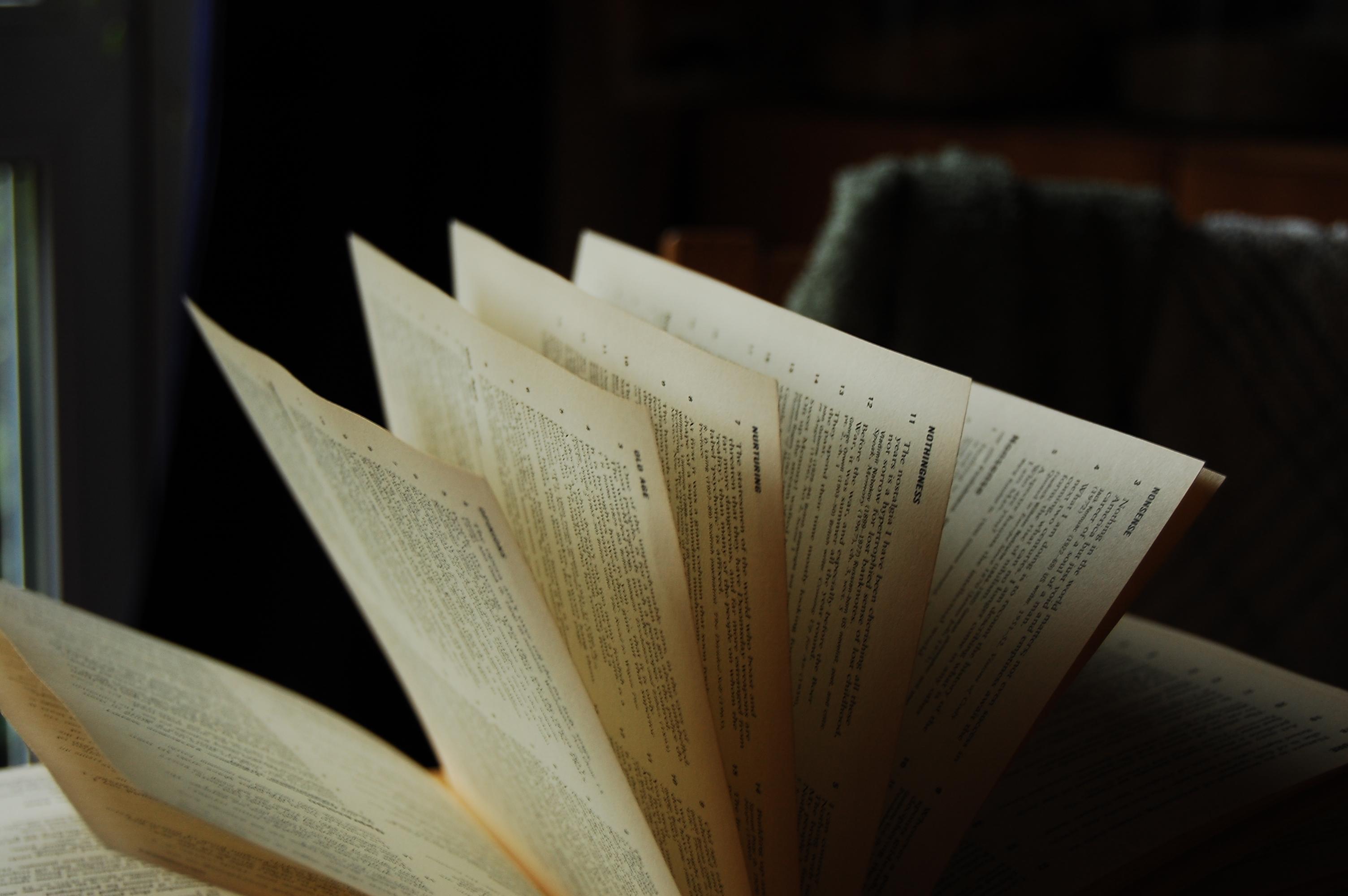 Diccionario. libro